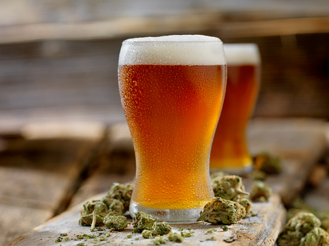 A pint of beer surrounded by buds of marijuana